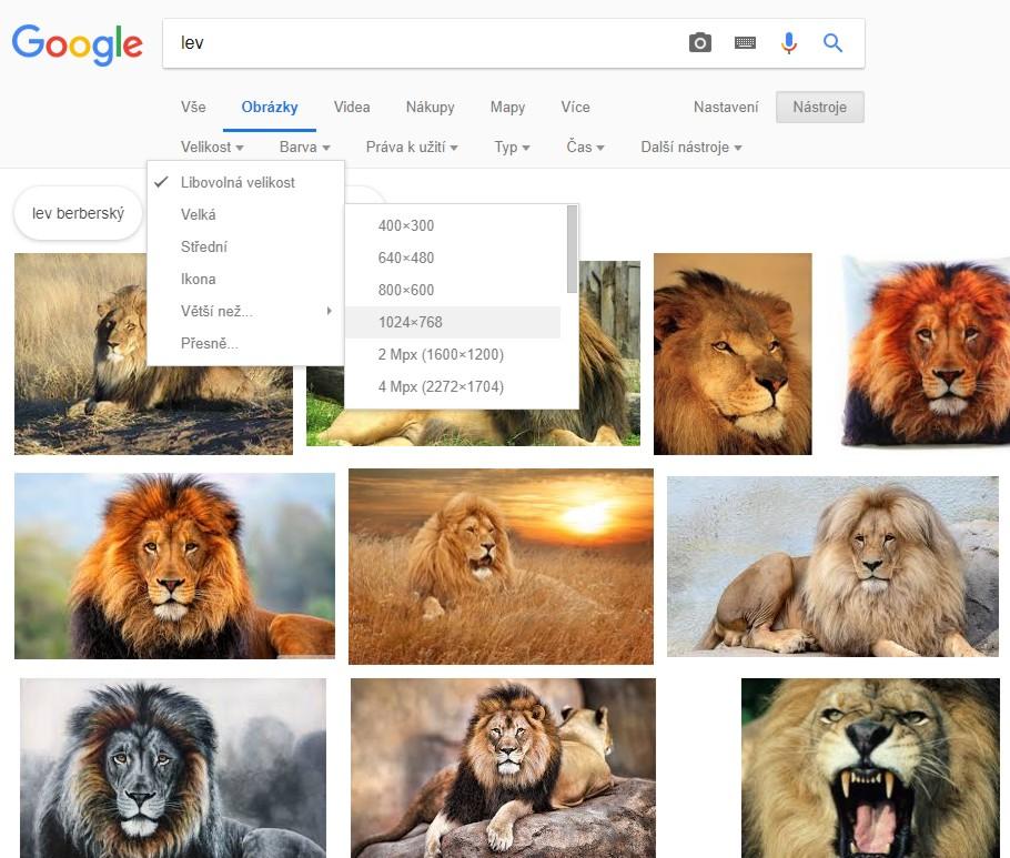 Služby vyhledávače Google (Images, Books, Patents …)